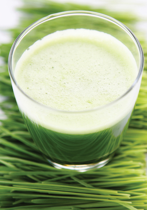Wheatgrass Cleanser Juice