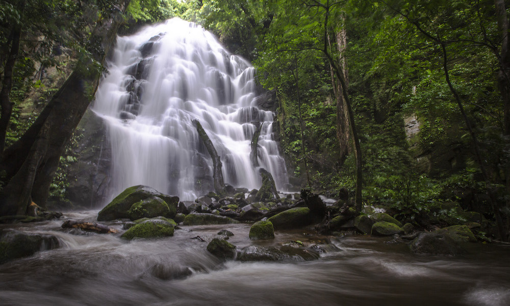 Find Your Flow: Adventure Meets Wellness in Costa Rica
