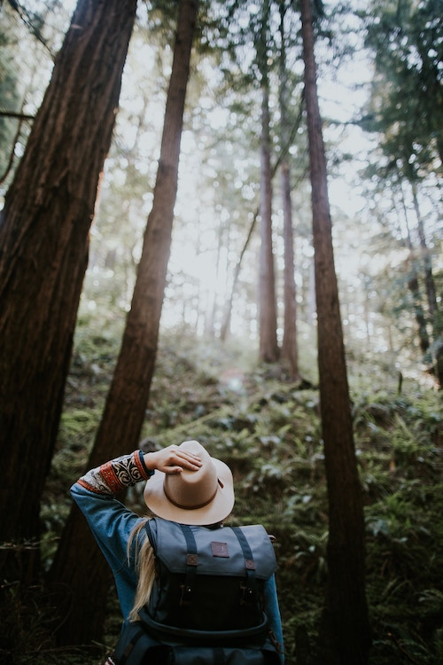 woman forest trekking hand on hat