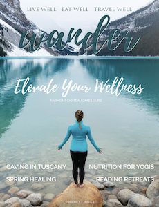 wander spring 2019 issue cover