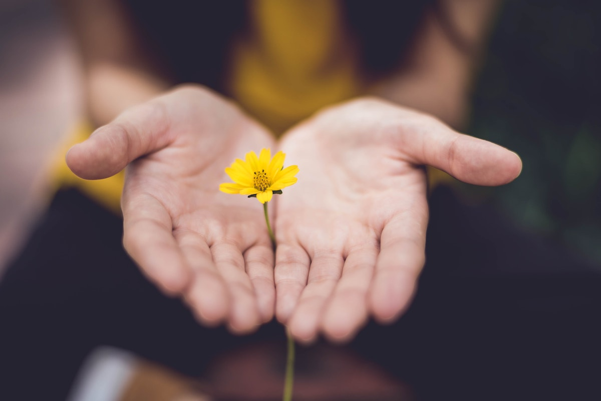 hands with flower