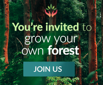 Grow Your Own Forest