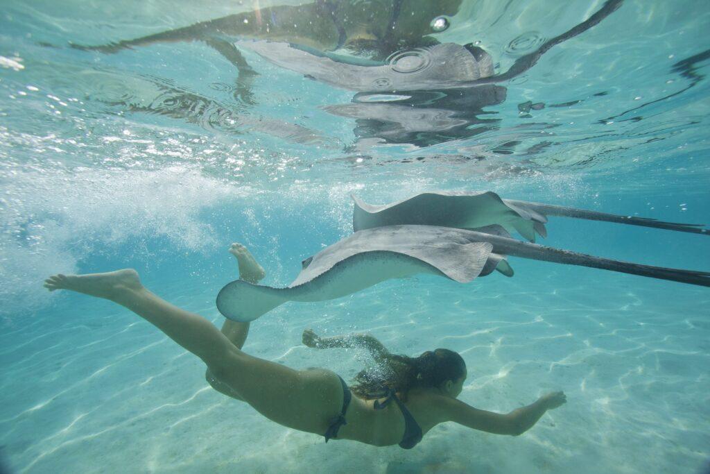 Tahiti Swimming Solo